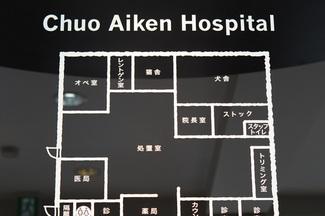 中央愛犬病院 診療のご案内